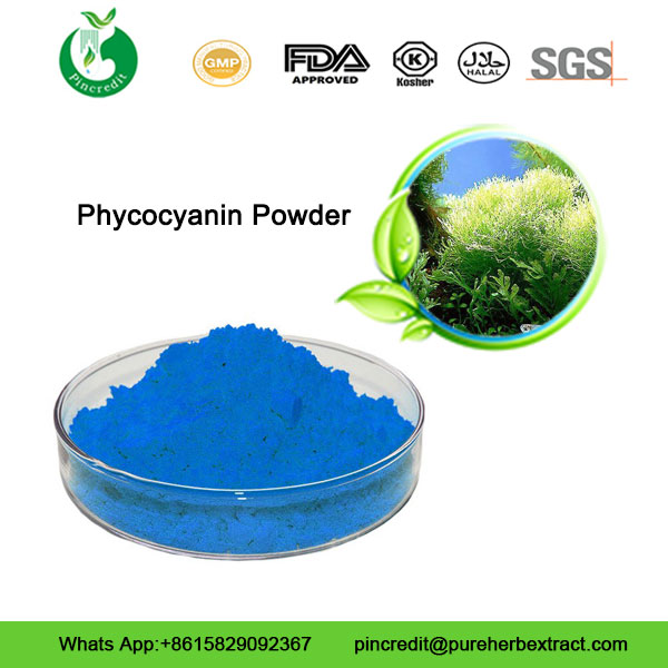 Phycocyanin-Powder