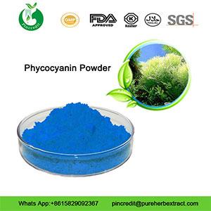 phycocyanin_powder333