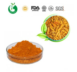 turmeric_extract_main