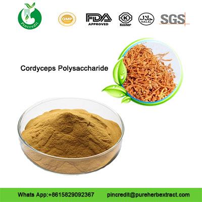 Cordyceps-Polysaccharide222