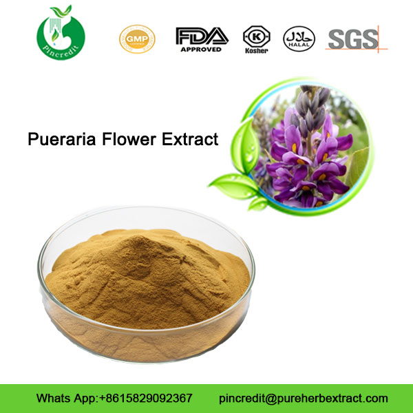 Pueraria Flower Extract