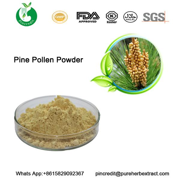 Pine-Pollen-Powder