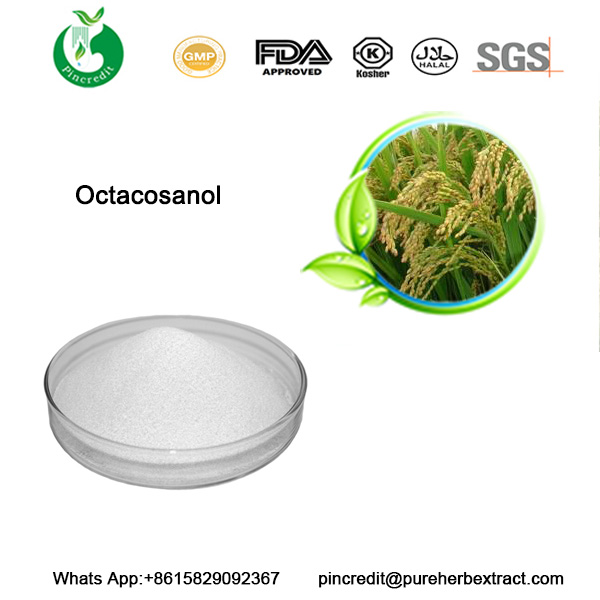 Octacosanol Powder