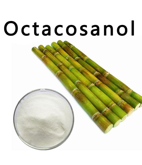 octacosanol1