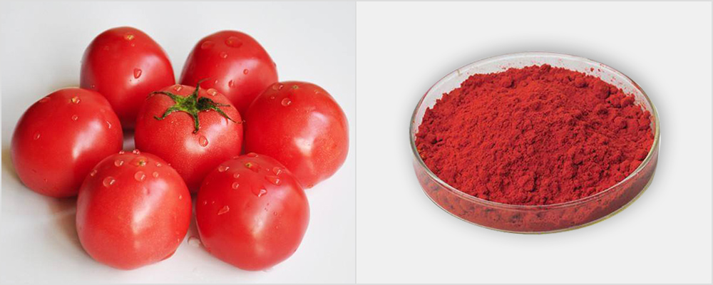 Tomato Skin Extract Powder