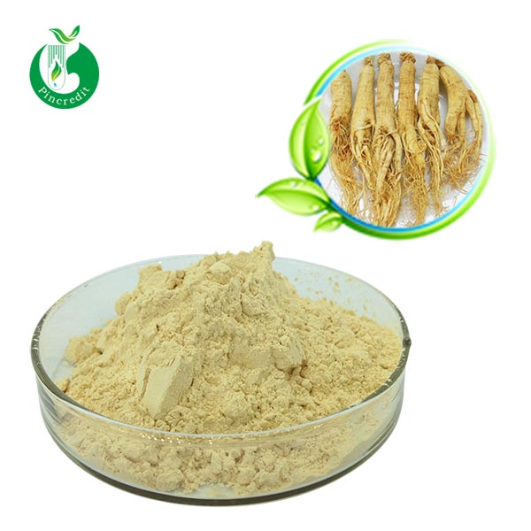 Panax Ginseng Root Extract Powder