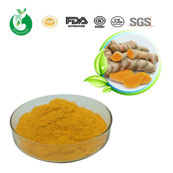 Turmeric Extract Curcumin Powder