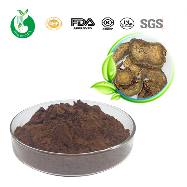 Rhubarb Root Extract Powder