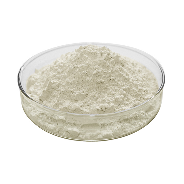 Carboxymethyl Chitosan Powder