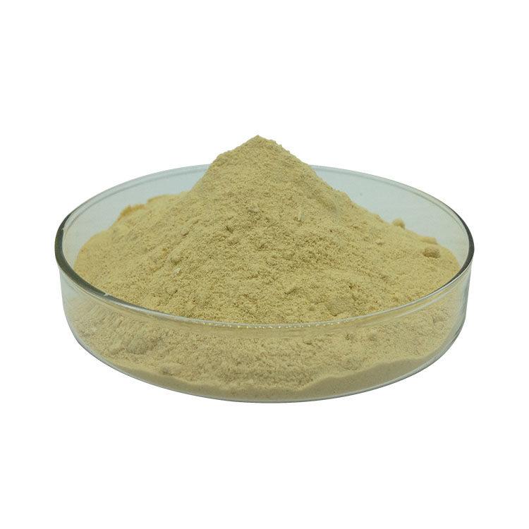 Astragaloside IV Powder